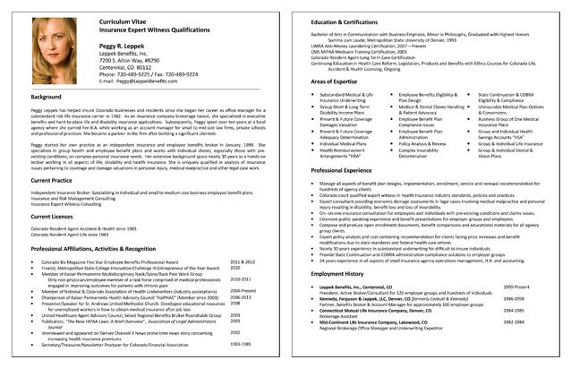 Insurance CV Template for Expert