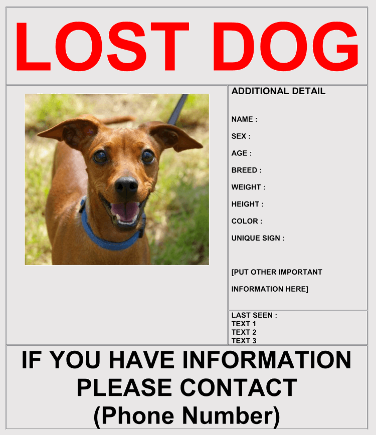 How To Make Lost Dog Flyers In Microsoft Word