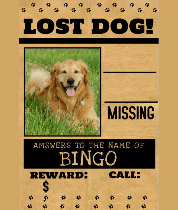 Lost-Dog-Flyer-Template-9