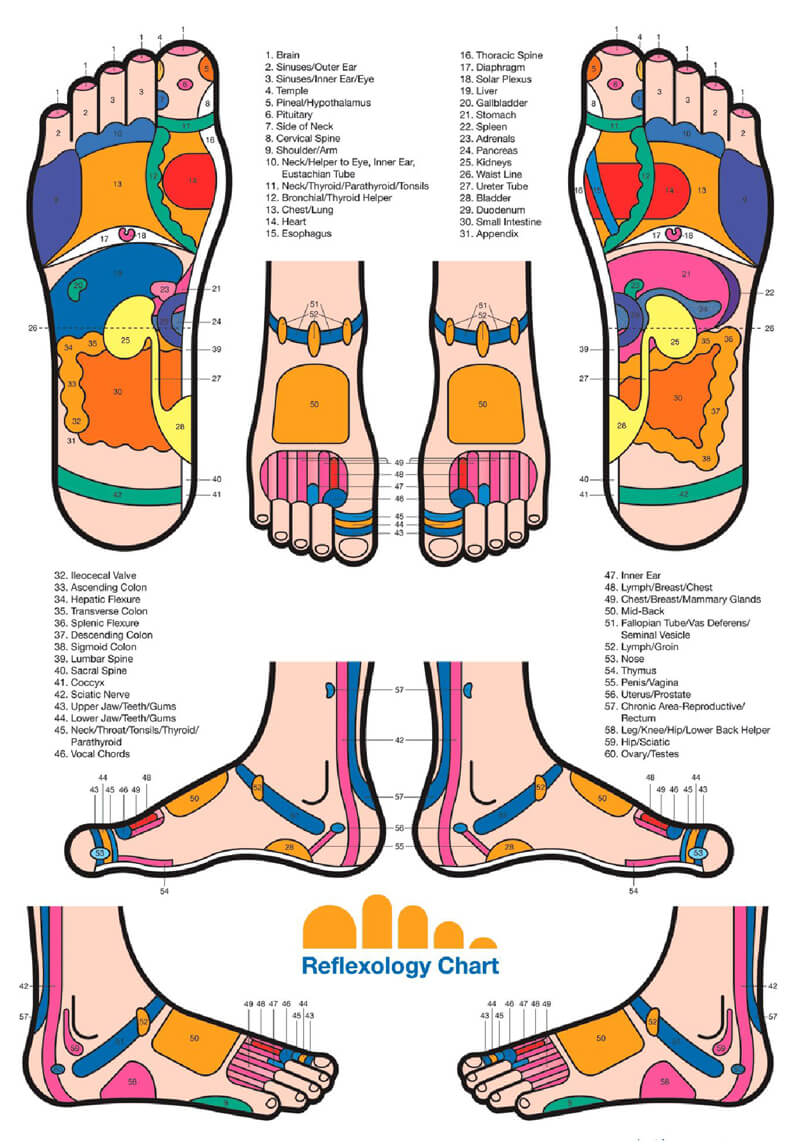 Free Foot Reflexology Chart 10