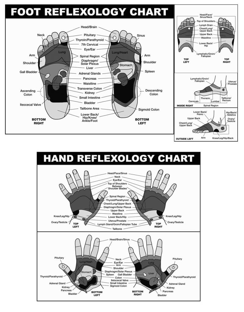 Free Foot Reflexology Chart 16