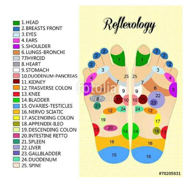 Free Foot Reflexology Chart 20