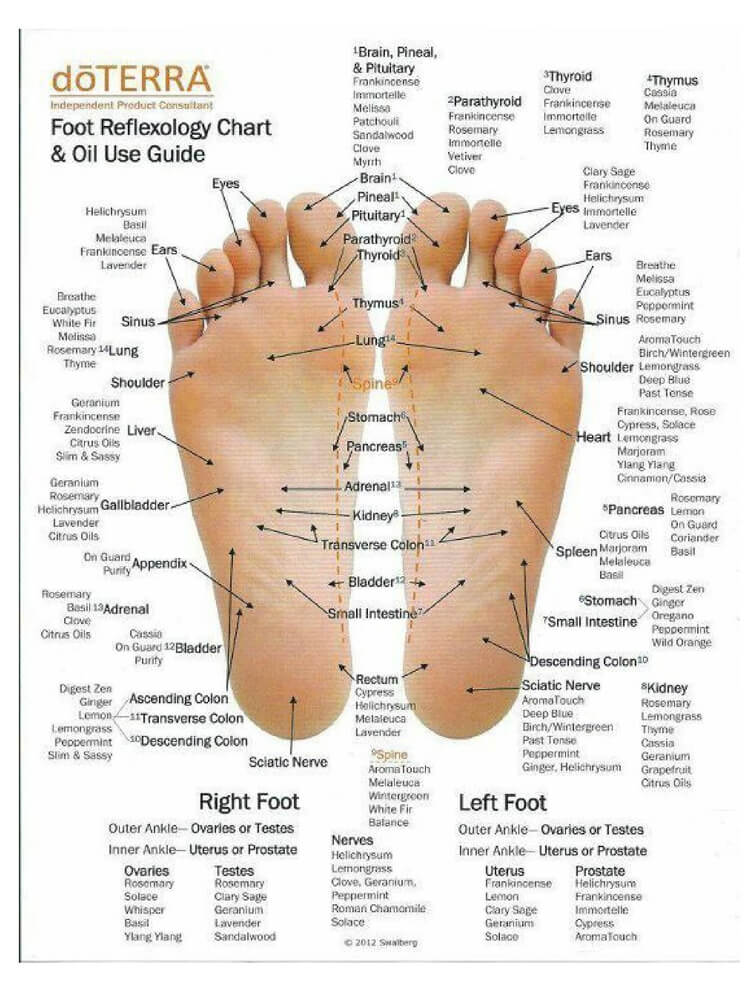 Free Foot Reflexology Chart 25