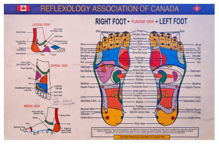 Free Foot Reflexology Chart 28