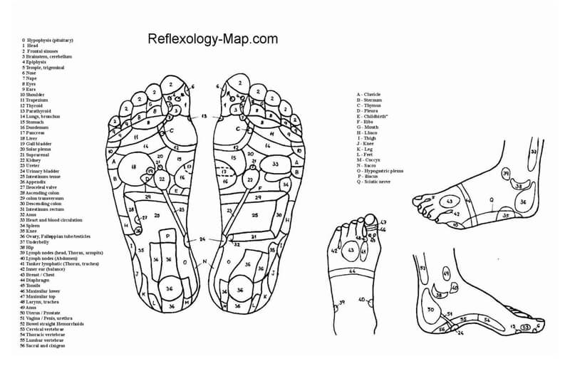 Free Foot Reflexology Map