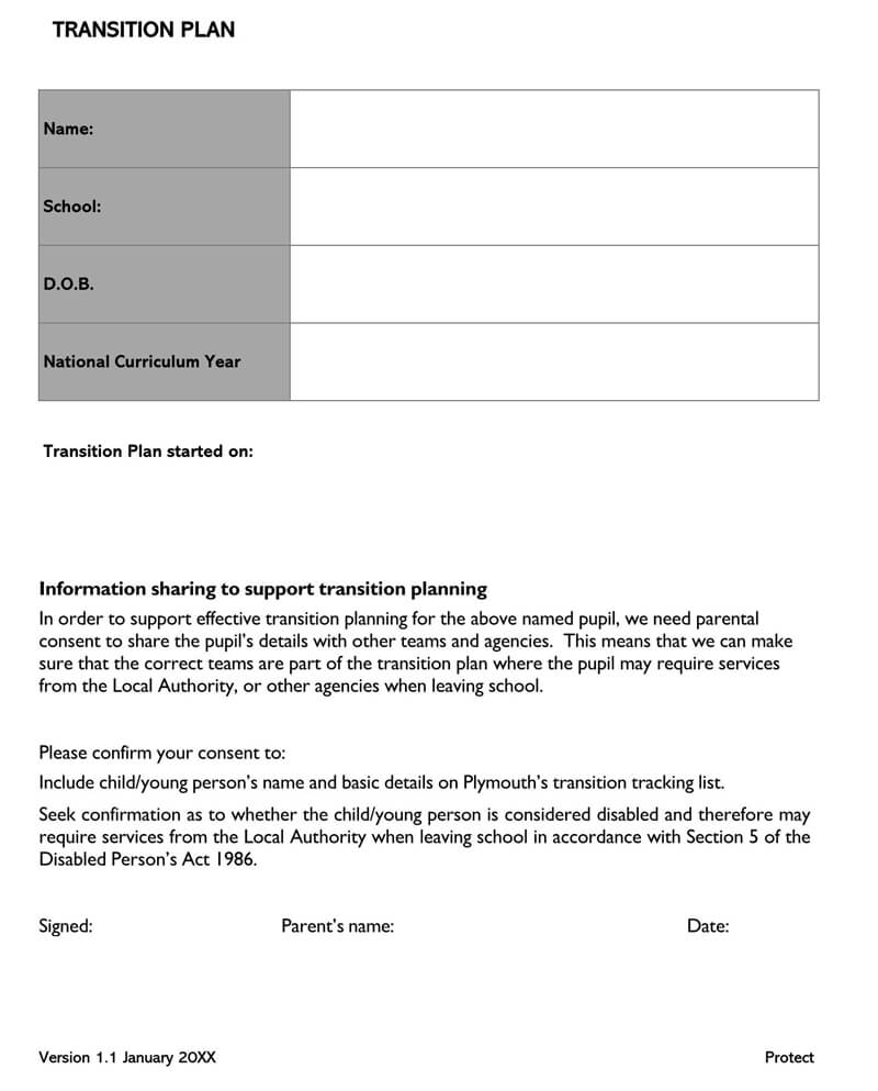 Transition Plan Template 09