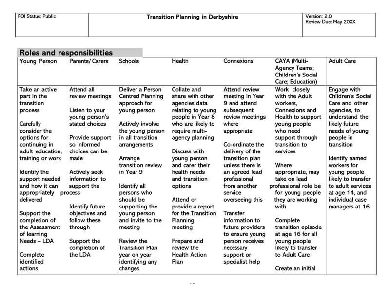 Transition Plan Template 20