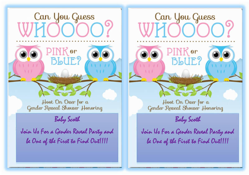 Gender Reveal Invitation Word Template  06