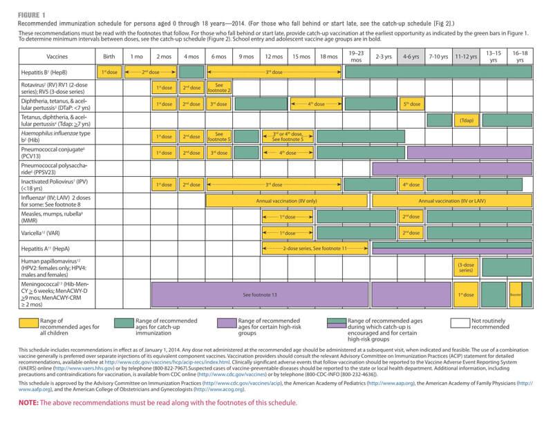 Immunization Schedule PDF Chart 01