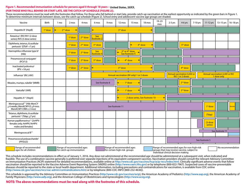 Immunization Schedule PDF Chart 04