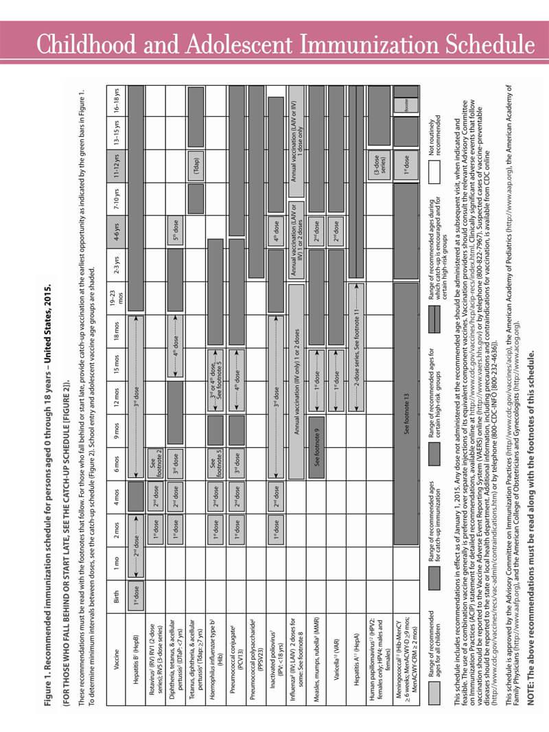 Immunization Schedule PDF Chart 08