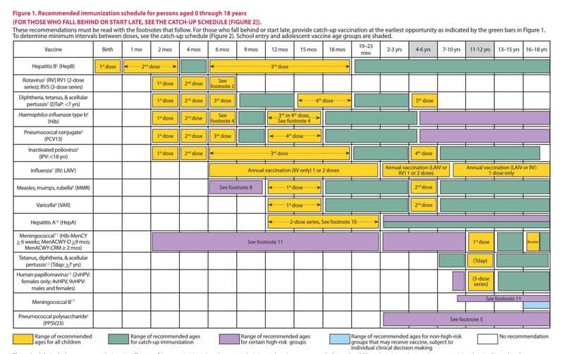Immunization Schedule PDF Chart 10