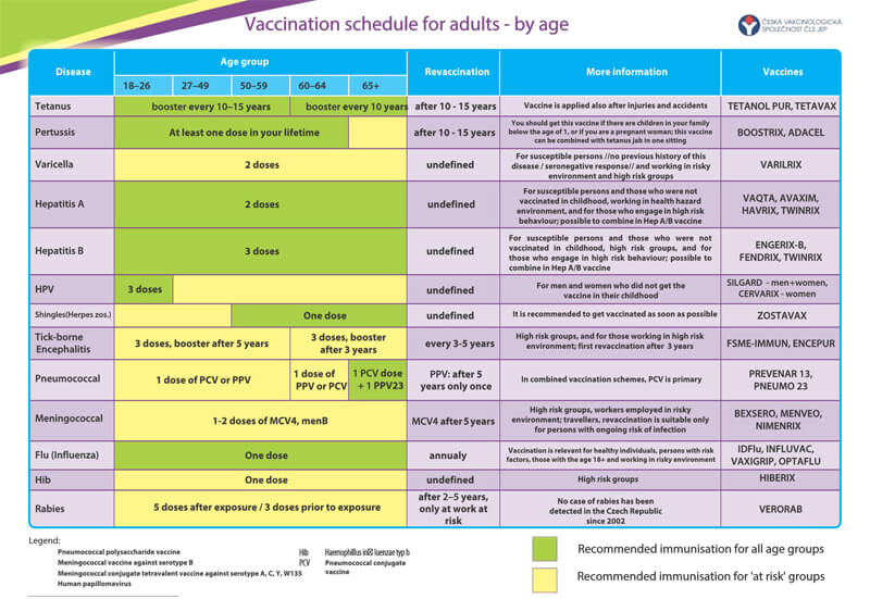 Vaccination Schedule for Adults PDF Chart