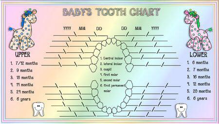 Baby Teeth Chart 12