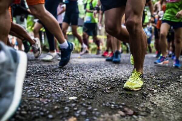 Free Marathon Pace Charts