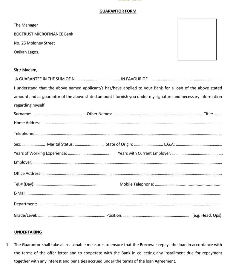 Free Loan Guarantor PDF Form
