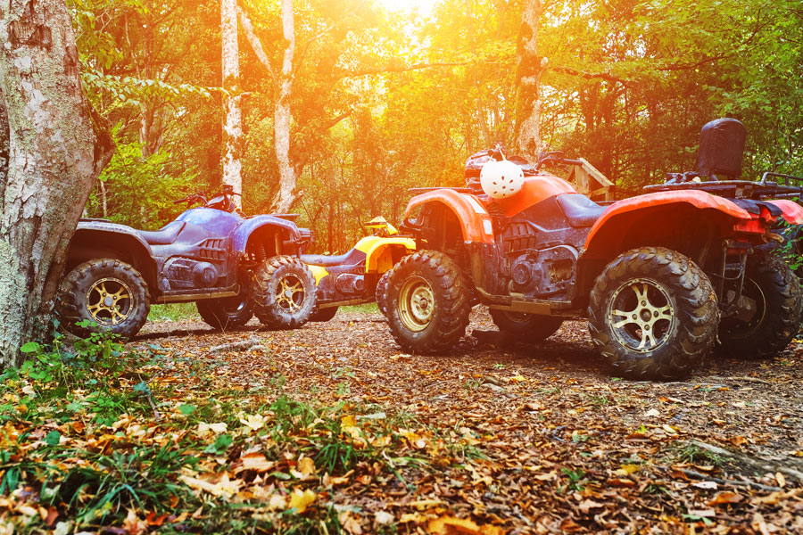 All-Terrain Vehicle Sale
