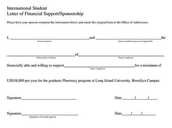 Letter of Support Template 12