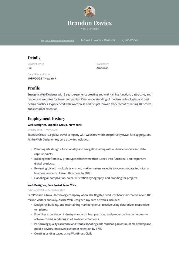 Web Developer Resume Doc Format Download
