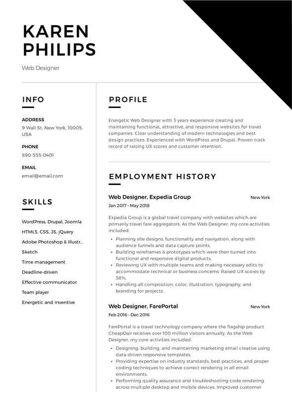 Sample of Developer Resume Template