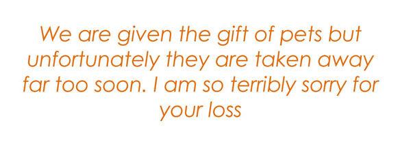 Sympathy-Words-Quote-13_