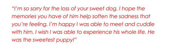 Sympathy-Words-Quote-18_
