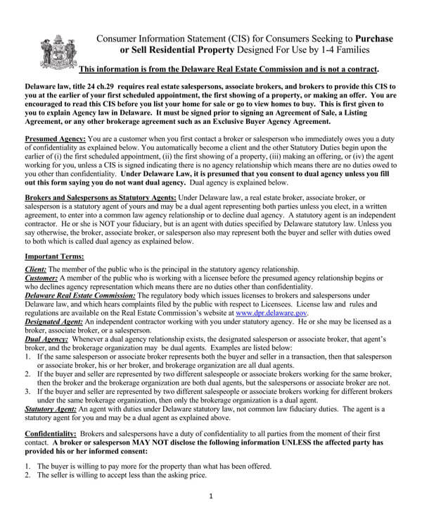 Delaware-Consumer-Information-Statement