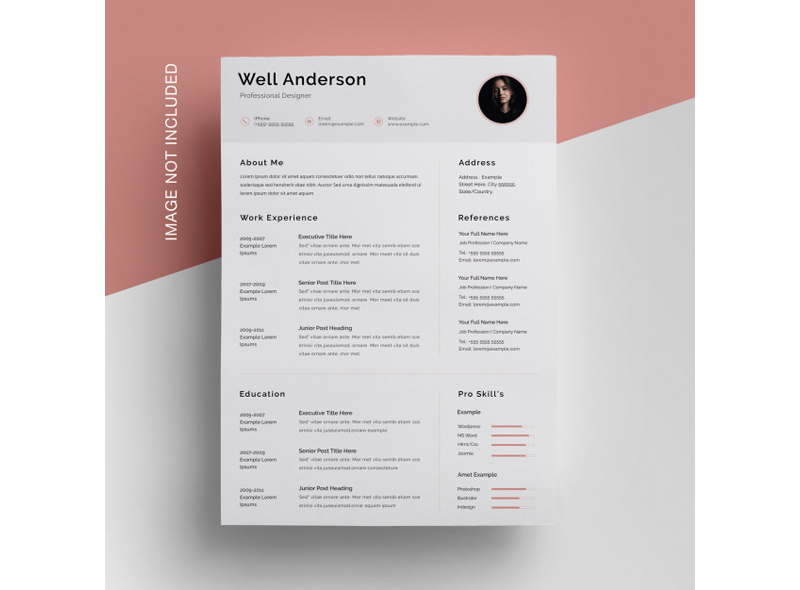 Financial Accountant Resume Template 18