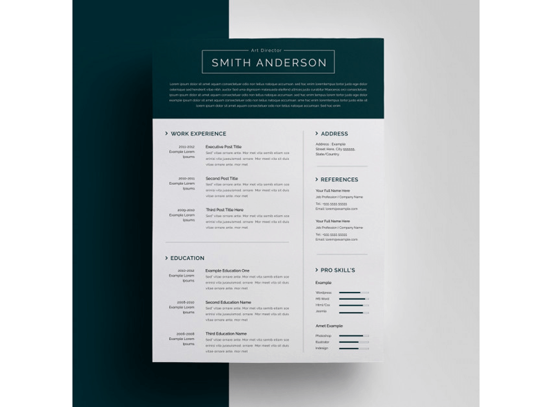 Financial Accountant Resume Template 16