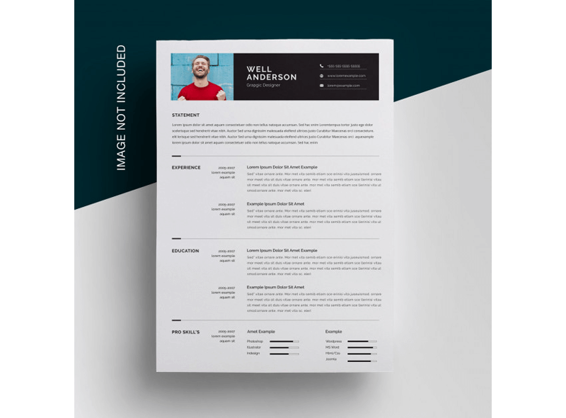 Financial Accountant Resume Template 17