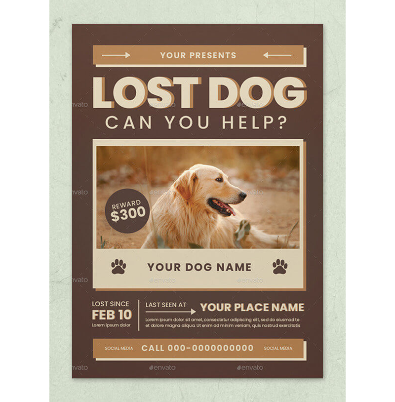 Lost Cat / Dog Flyer & Poster 18