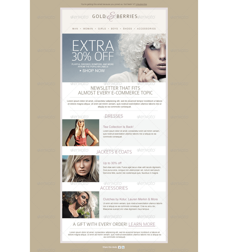 3-in-1 Email Newsletter Template