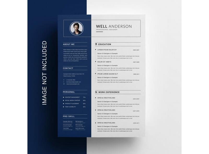 Insurance Resume Template 17