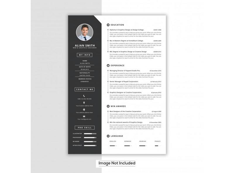 Web Designer and Developer Resume 23