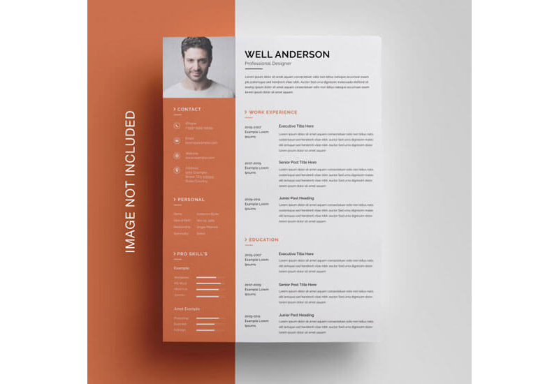 CV Examples for Architecture Job 11